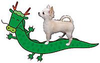 20120101_dog2